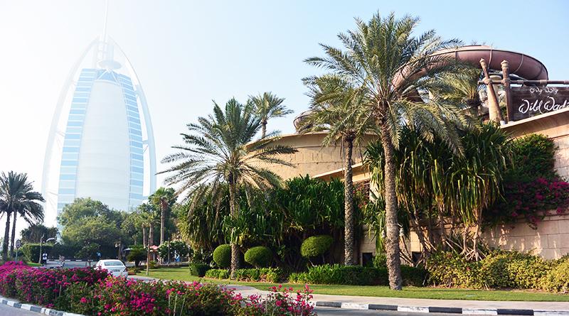 Осень в ОАЭ. Немного про Дубай